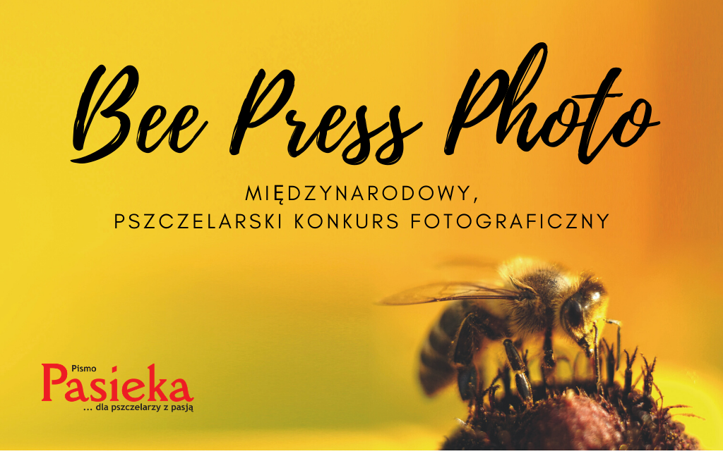 Bee Press Photo